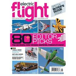 Electric Flight